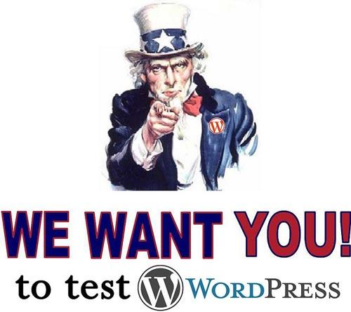 Test di un nuovo tema per WordPress