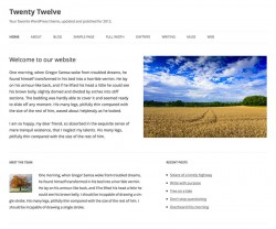 Twenty Twelve nuovo tema di default di WordPress 3.5