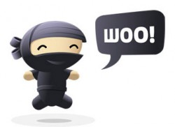 WooNinja by WooThemes