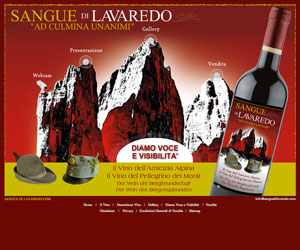 www.sanguedilavaredo.com