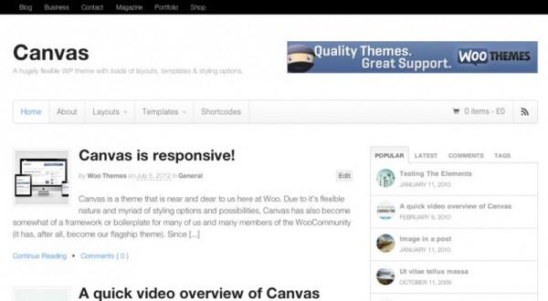 Come personalizzare il tema Canvas per WordPress
